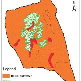 Essay On Conservation Of Water In Kannada Full